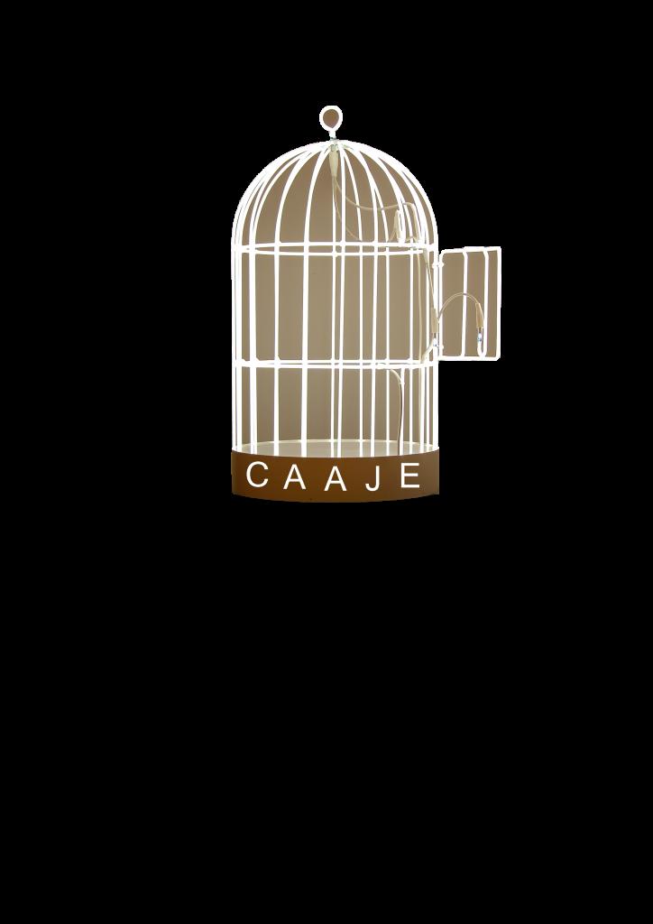 Logo CAAJE